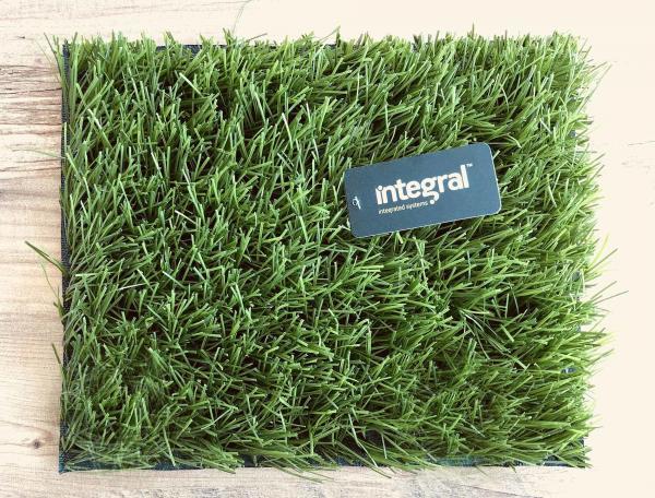 Artificial Grass Prices